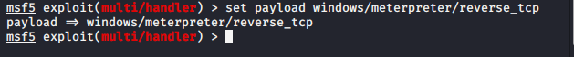 Set the windows meterpreter reverse_tcp payload.