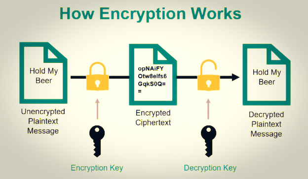 What is Encryption, and How does it Work? Encryption, Hashing, Encoding, and Obfuscation